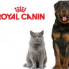 АКЦИИ Royal Canin